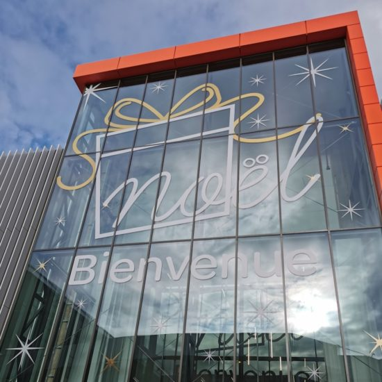Verrières en vinyle teinté masse du centre commercial Carrefour Lingostière Nice. L'Agence - Groupe Riccobono.
